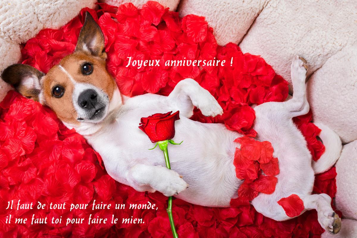 Cartes Virtuelles Anniversaire Amour Joliecarte