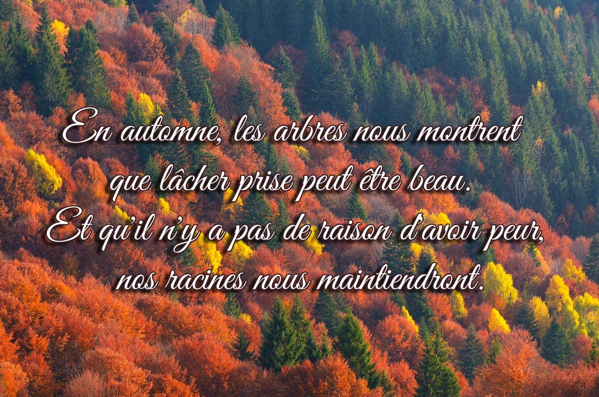 Belles citations automne