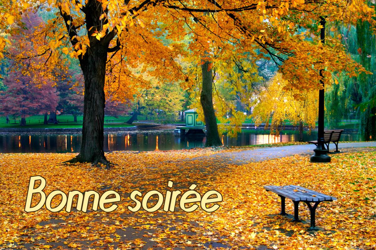 SAMEDI 3 Bonne-soiree