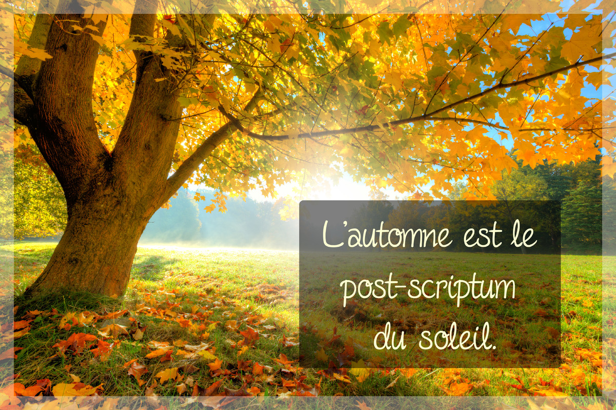 Proverbe automne