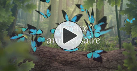jolie carte anniversaire animée Carte anniversaire animee   Joliecarte.com