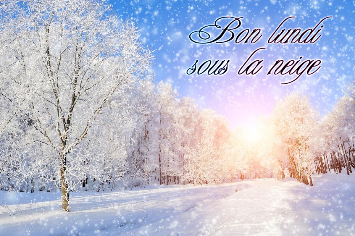 Bon lundi sous la neige