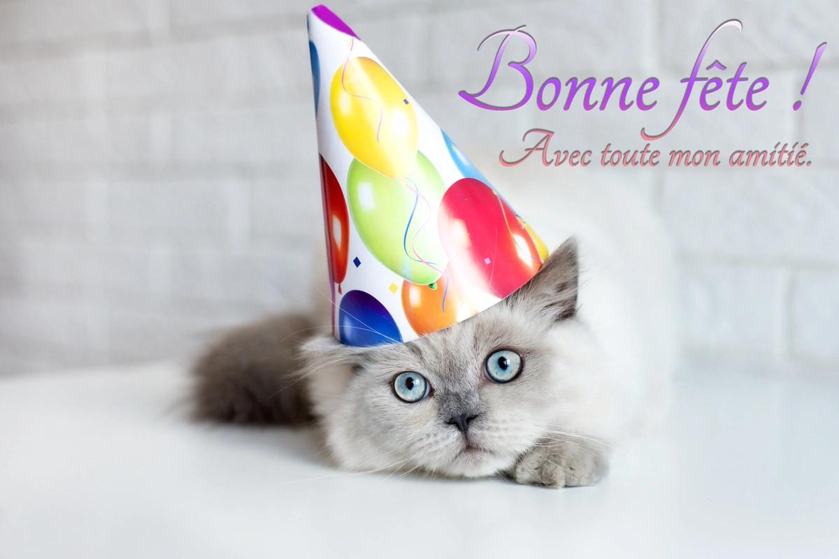 Bonne fete Zouke ! - haititalkonline.com