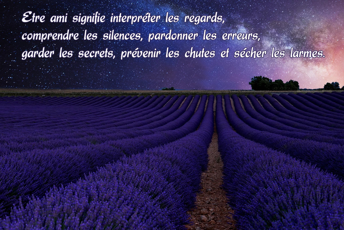 Citation amis