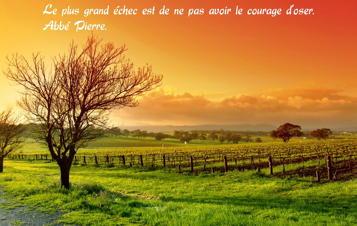 Citation abbe pierre