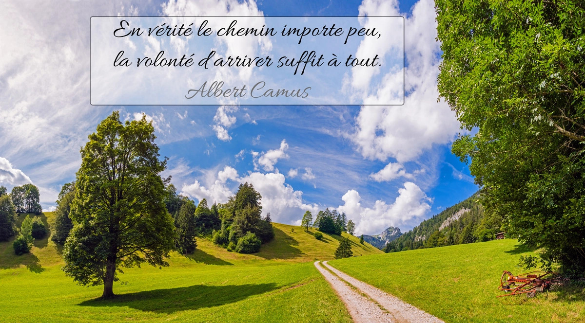 Citation albert camus