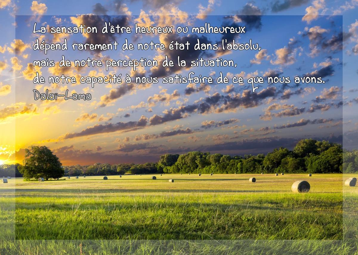 Citation texte dalai lama