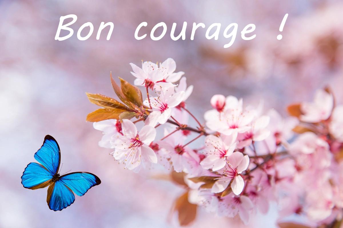 Message de courage
