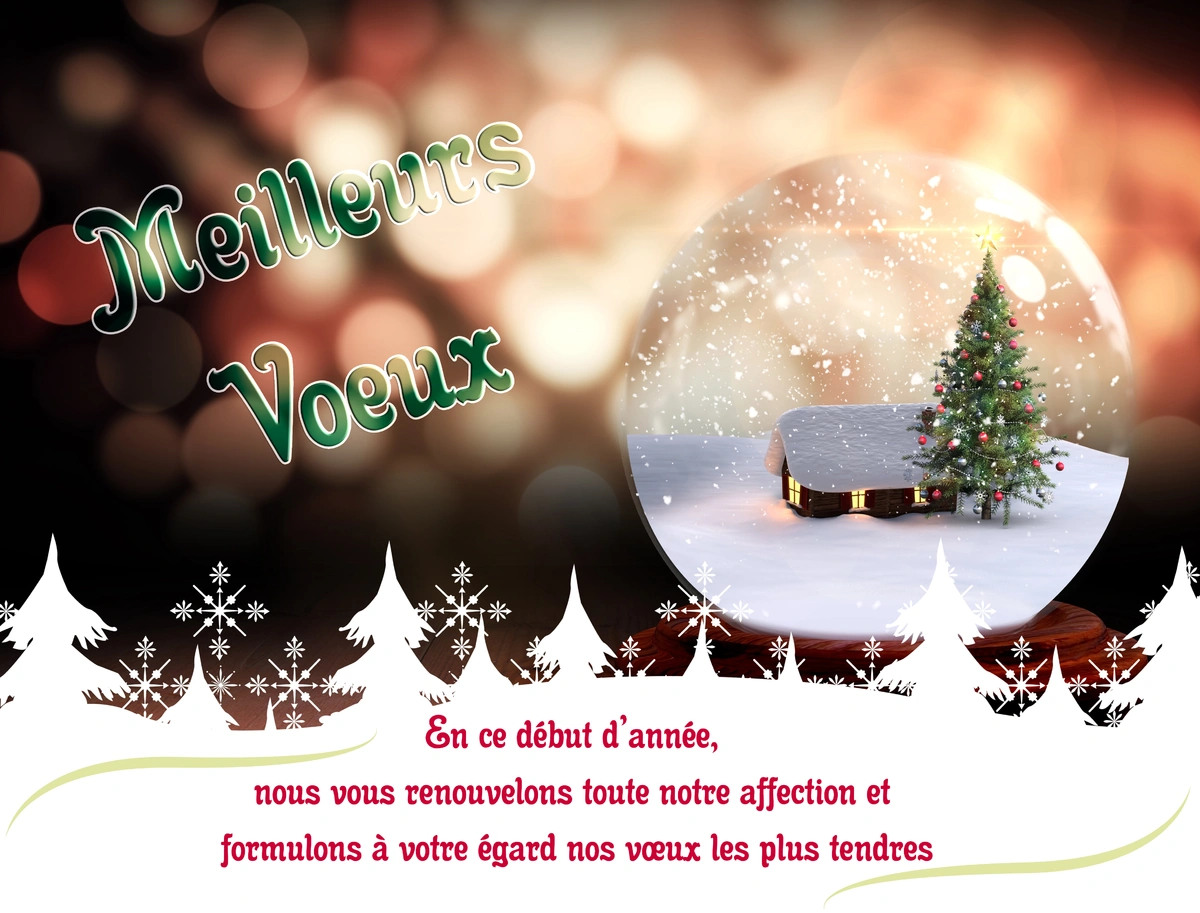 Carte de noel virtuelle personnalisee