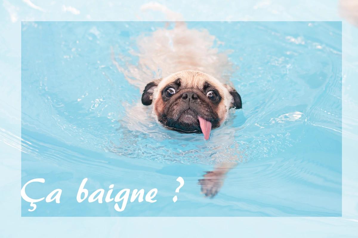 Ca baigne