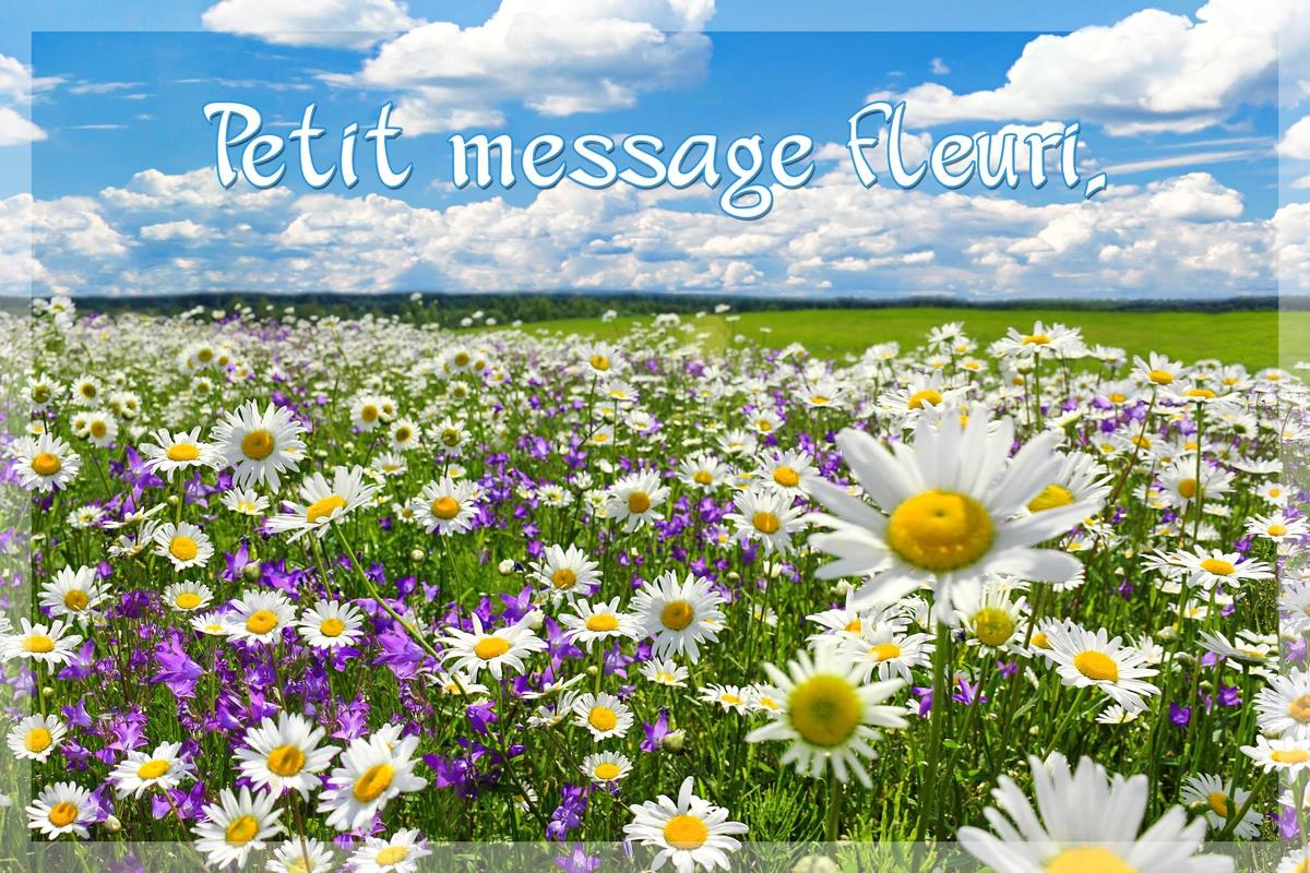 Petit message pour faire plaisir
