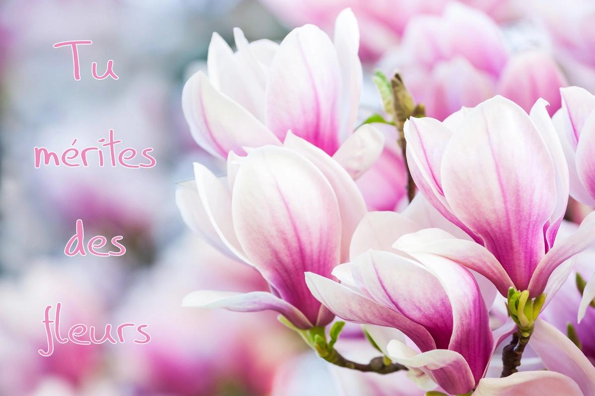 Tu merites des fleurs
