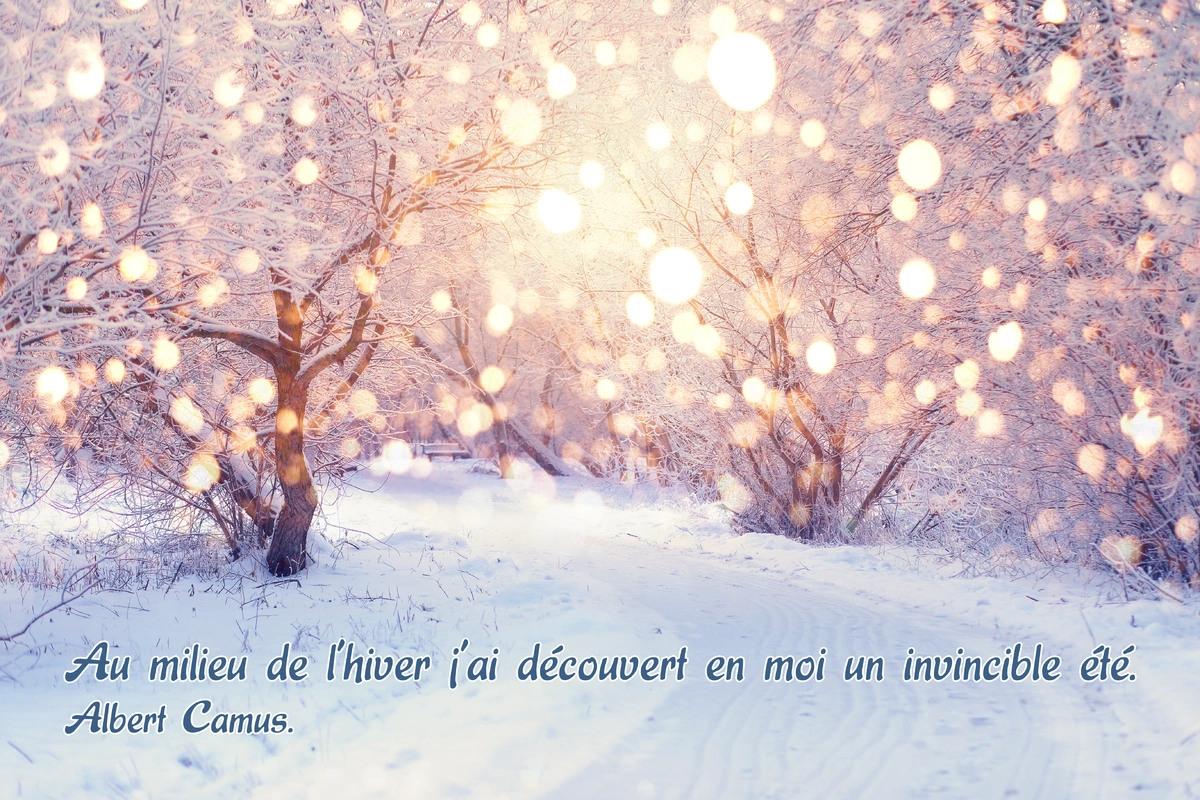Citation hiver