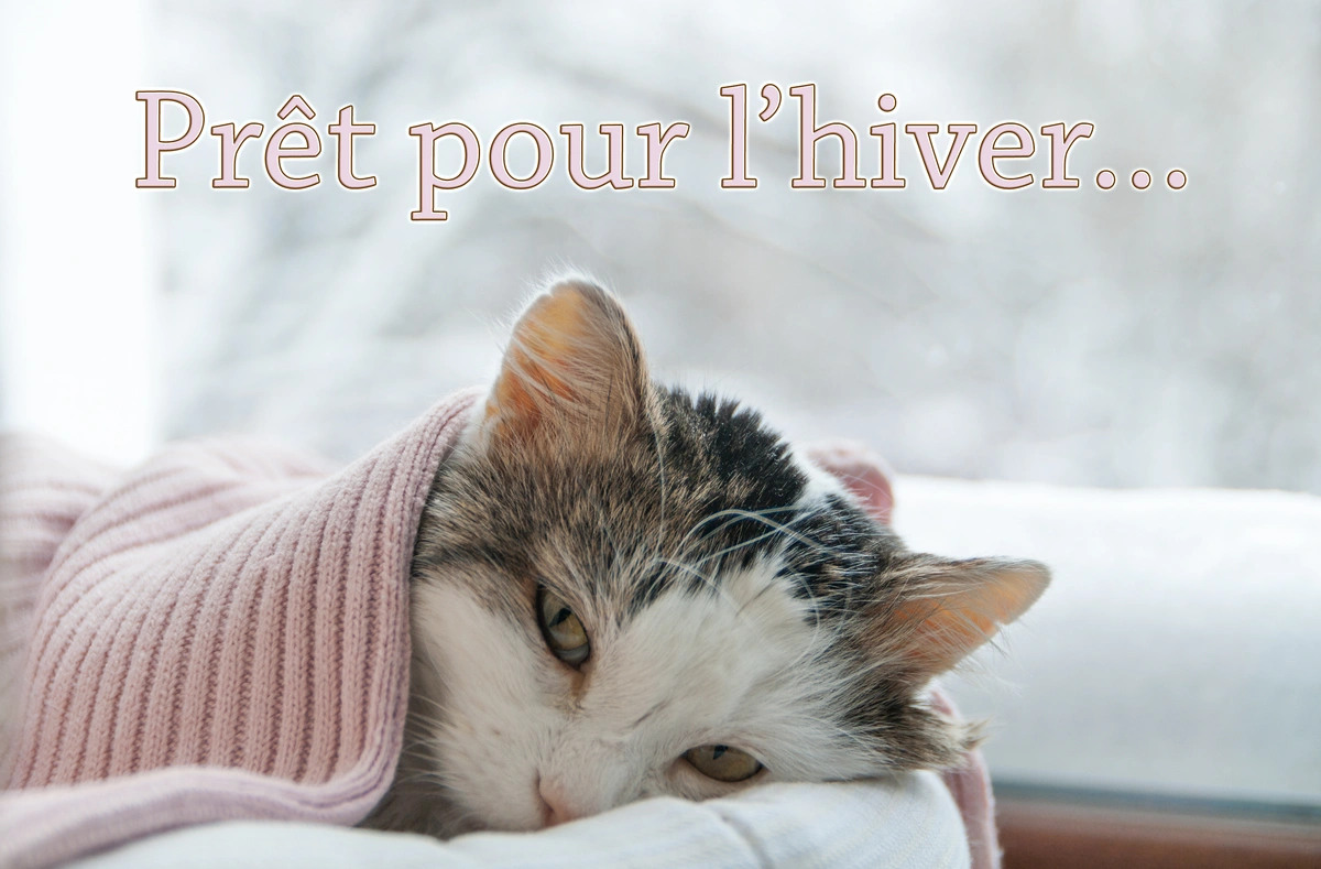 Message hiver