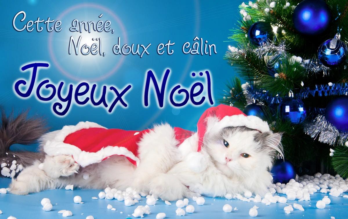 chat-noel