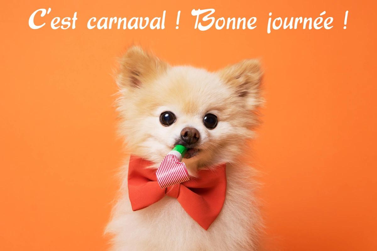 """Résultat de recherche d'images pour """"bonne journée de carnaval images"""""""