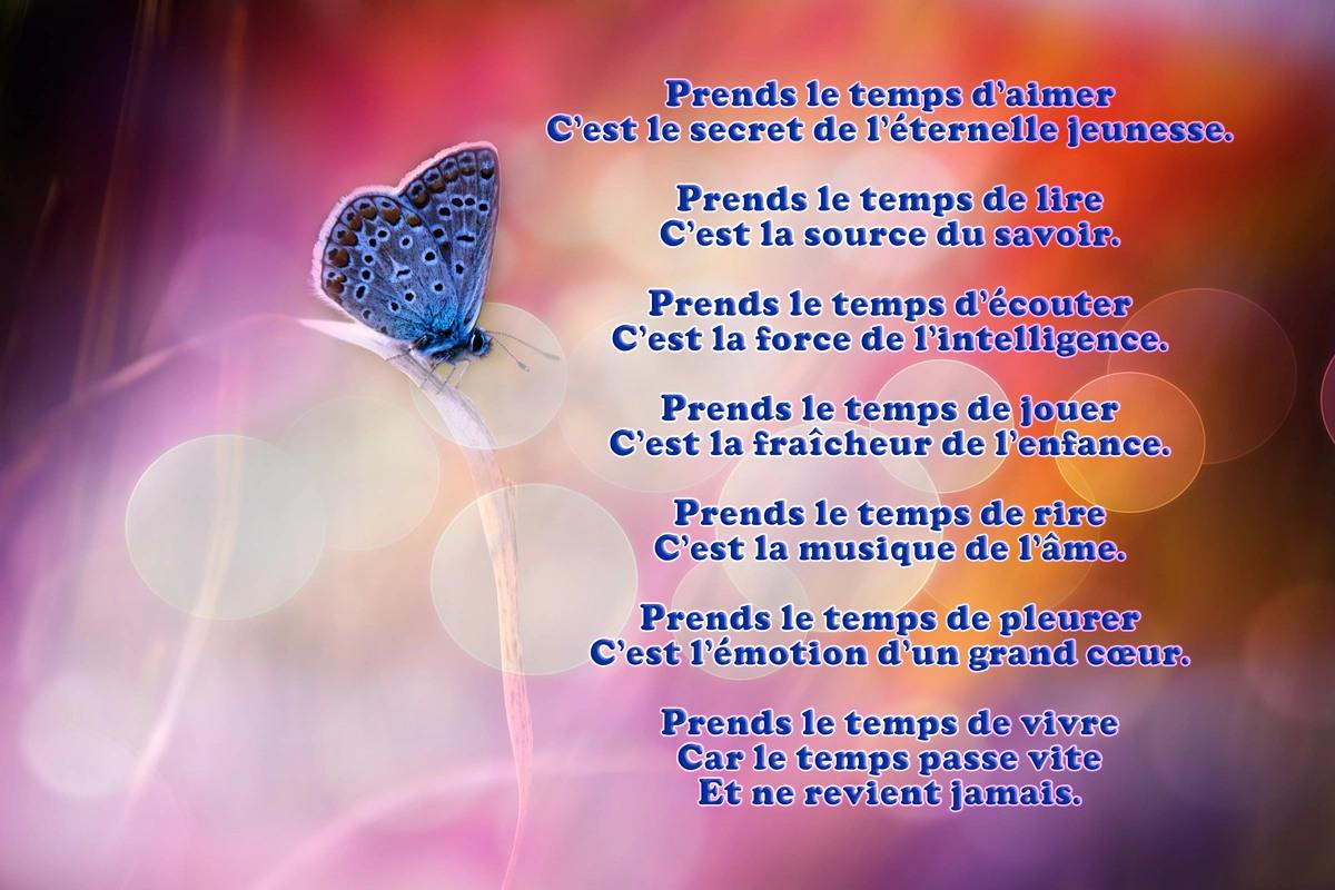 Texte poeme
