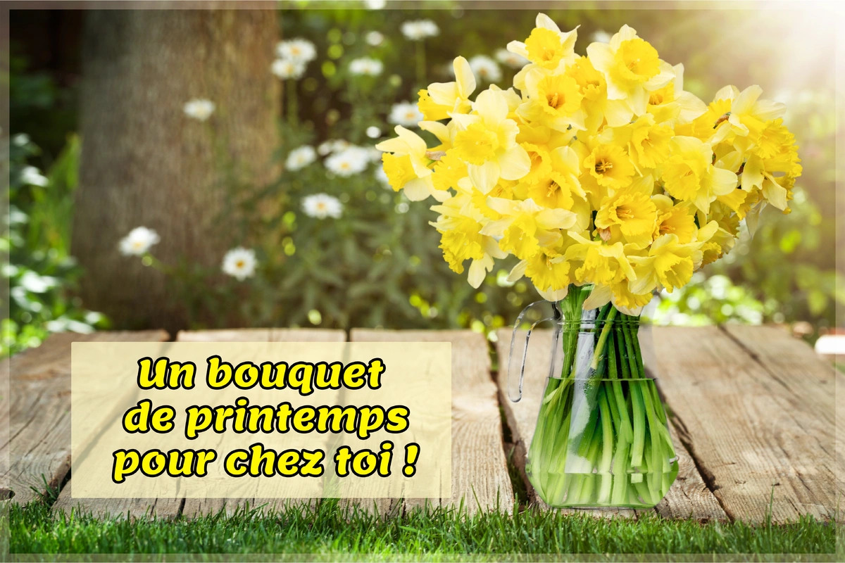 Bouquet de printemps