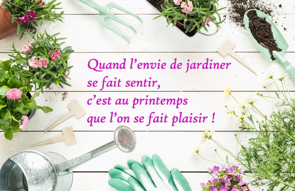 Cartes virtuelles printemps jardin joliecarte for Au jardin de tadine cartes virtuelles