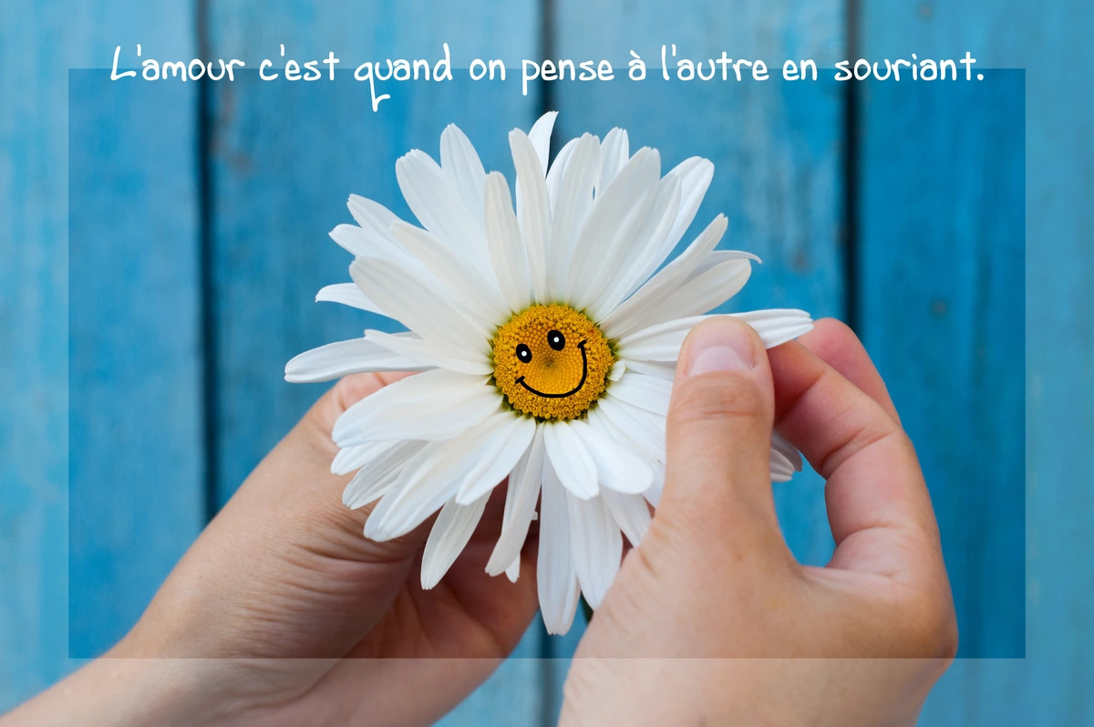 Phrase texte citation amour
