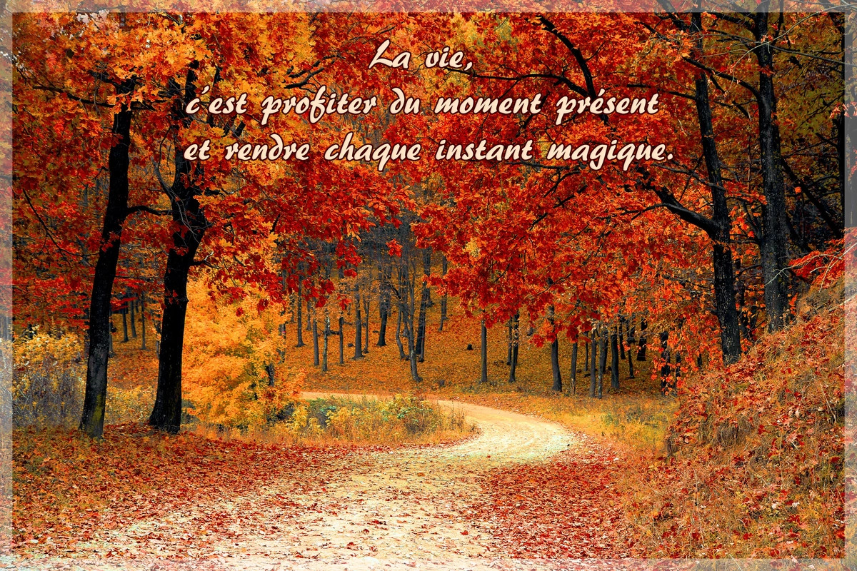 Profiter du moment present