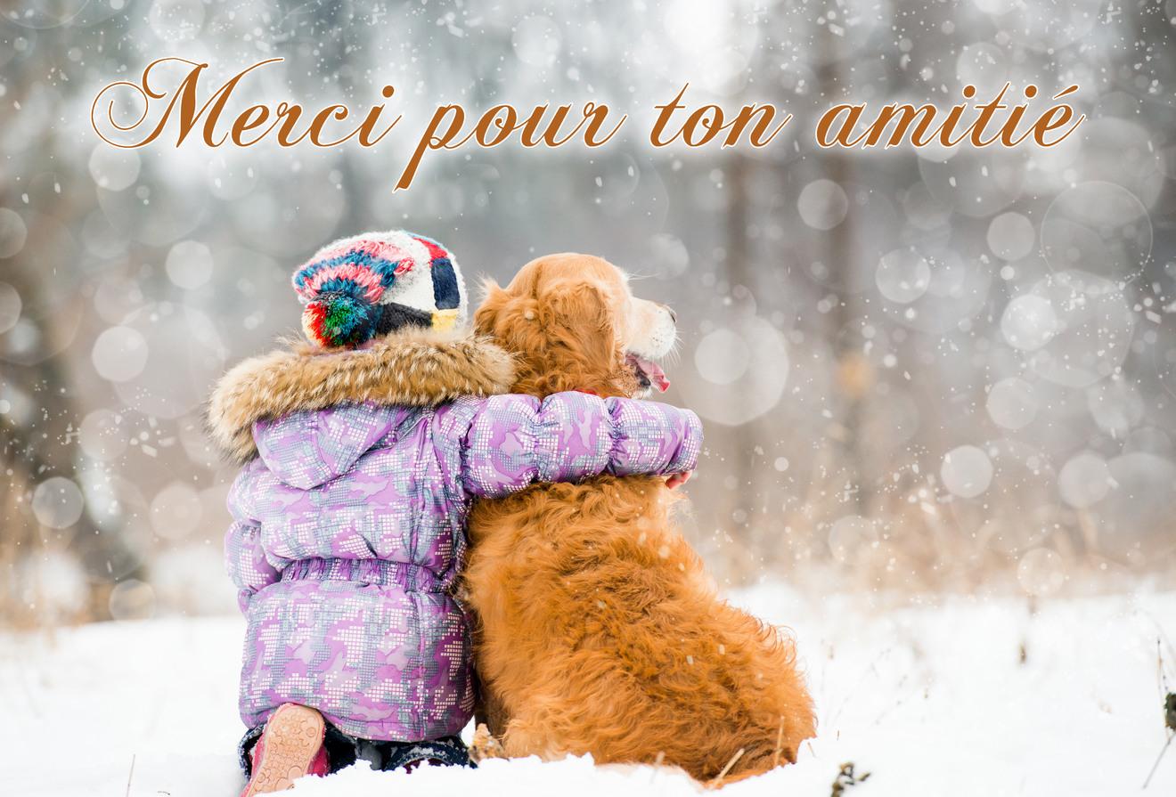 Cartes virtuelles merci pour ton amitie - Joliecarte