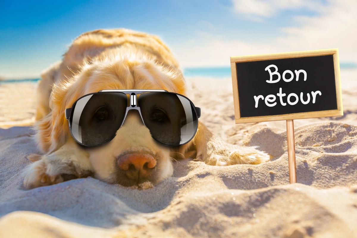 Bon retour de vacances