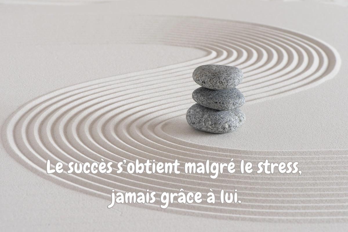Citation sur le succes