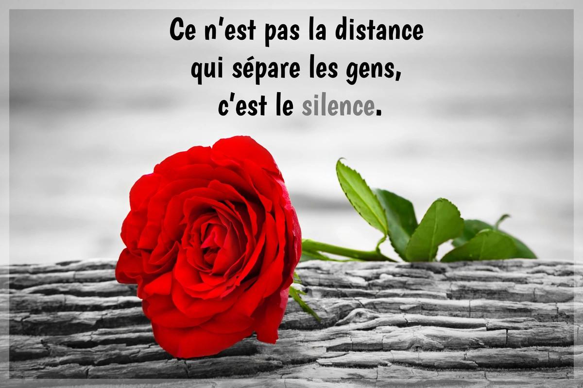 La distance qui separe