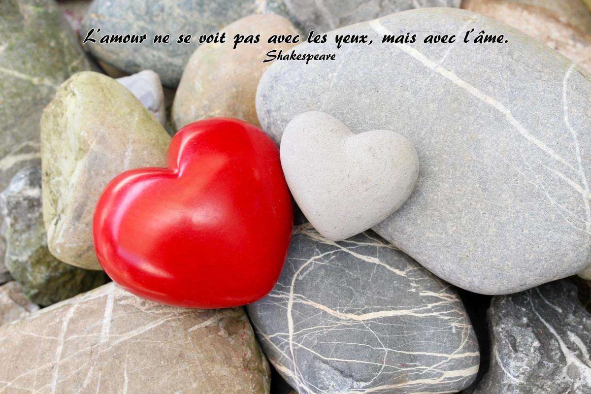 Phrase amour