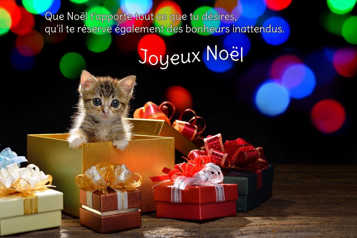 Cartes virtuelles texte joyeux noel gratuit joliecarte - Carte de noel virtuelle gratuite ...