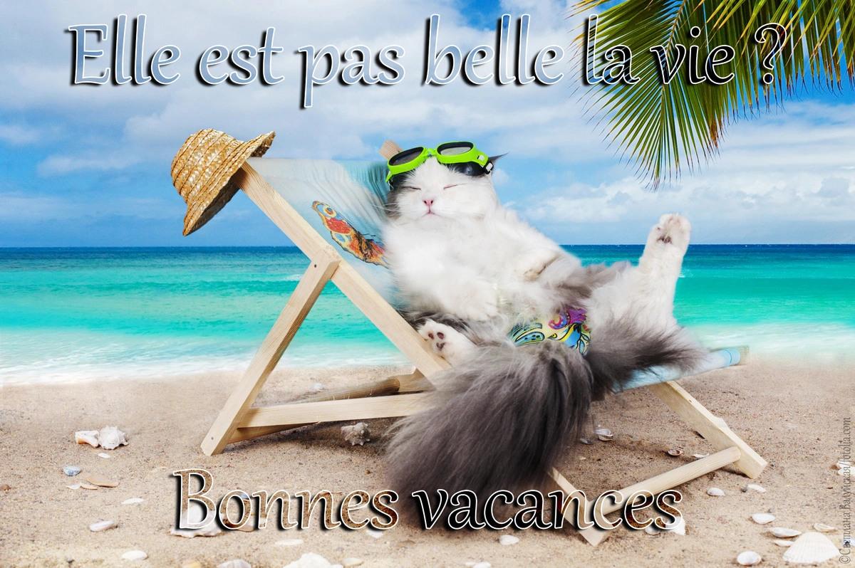 Vacances la belle vie