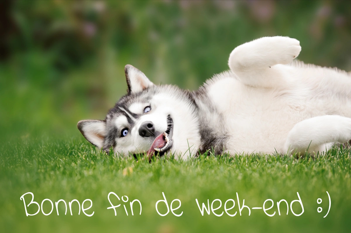 Bonne fin de week end