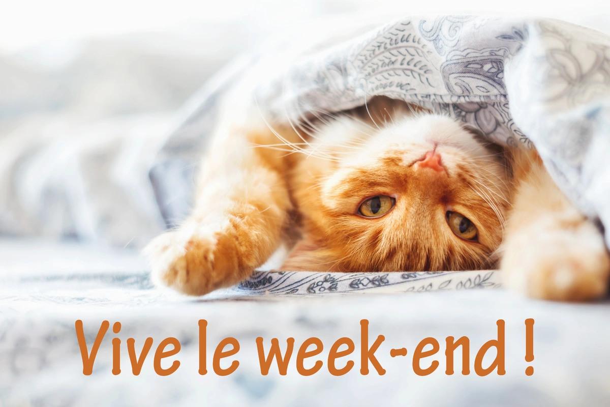 Vendredi 4 janvier Vive-le-week-end